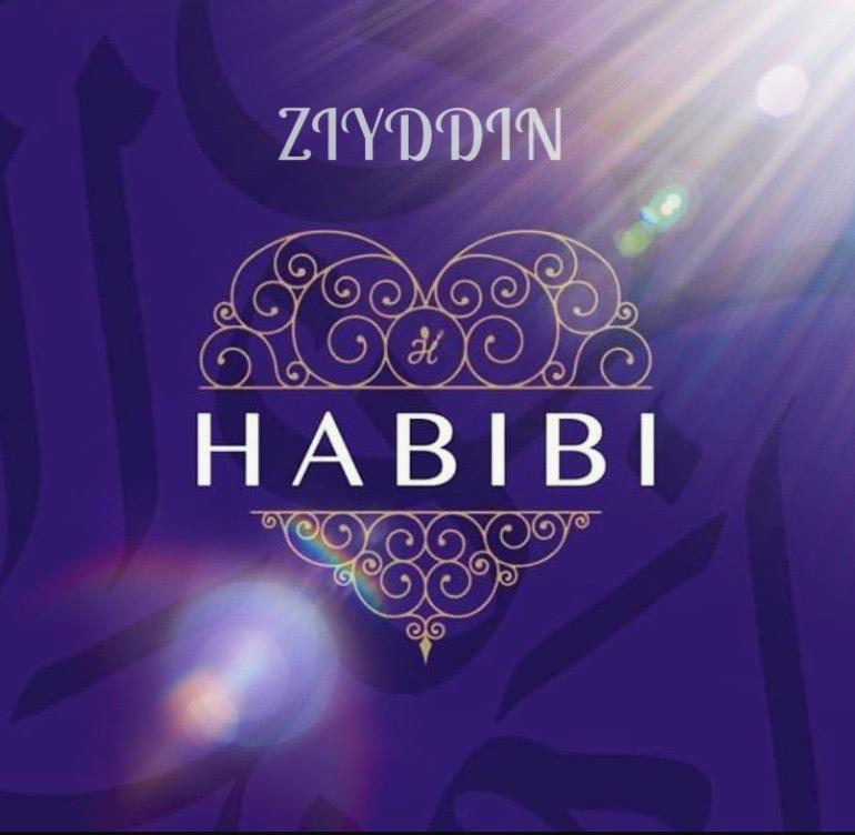 ZIYDDIN — HABIBI