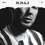 KALI feat. Gruppa Skryptonite, Maqlao — Правил нет
