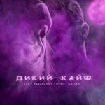 LXE & kavabanga Depo kolibri – Дикий кайф