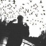 Hugo Loud — Птички