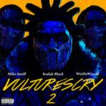 Kodak Black & Mike Smiff & WizDaWizard — VULTURES CRY 2