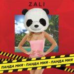 MC Zali — Панда Мия