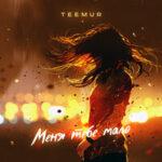 TeeMur — Меня тебе мало