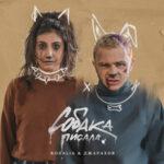 Джарахов & Rozalia – Собака писала