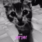 saypink! — Кис