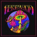 IROH & Flipper Floyd — Ponyland