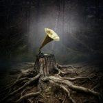 Аквариум — Стучаться в Двери Травы