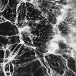 БЛЭКОУЛ & Illumate — На чистую воду