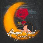 Ahmed Shad — Засыпай