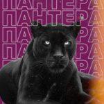 Супермем — Пантера
