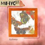 МИНУС18 — Бабочки