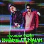 NECHAEV & Tatar — Shake It Damn