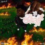 Sheff G — Start Some Shyt