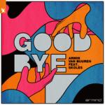 Armin van Buuren & SKOLES — Goodbye