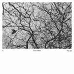 Damon Albarn — Polaris
