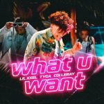 Tyga & Coi Leray & Lil Xxel — What U Want