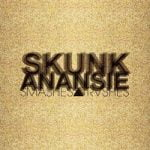 Skunk Anansie — Because Of You