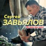 Сергей Завьялов — Не гони ты меня