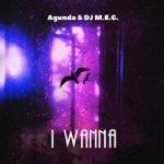Agunda & DJ M.E.G. — I Wanna