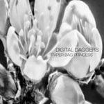 Digital Daggers — Paper Bag Princess