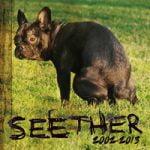 Seether — Burn the Bridges (Demo)